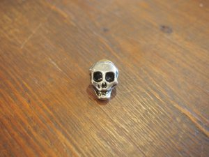 画像2: Skull/Gold